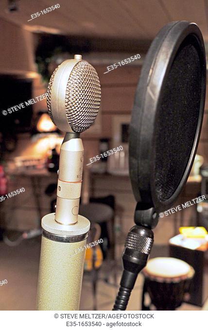 A Kiwi brand professional studio condenser microphone with baffle