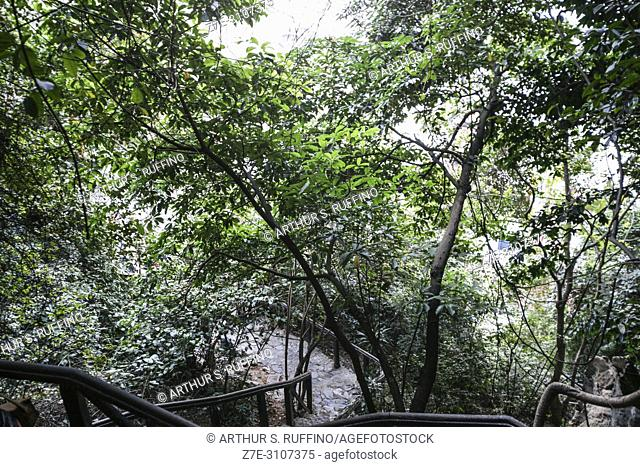 Steps leading to Dau Go Cave, Dau Go Island, Ha Long Bay, UNESCO World Heritage Site, Quang Ninh Province, Vietnam, Southeast Asia