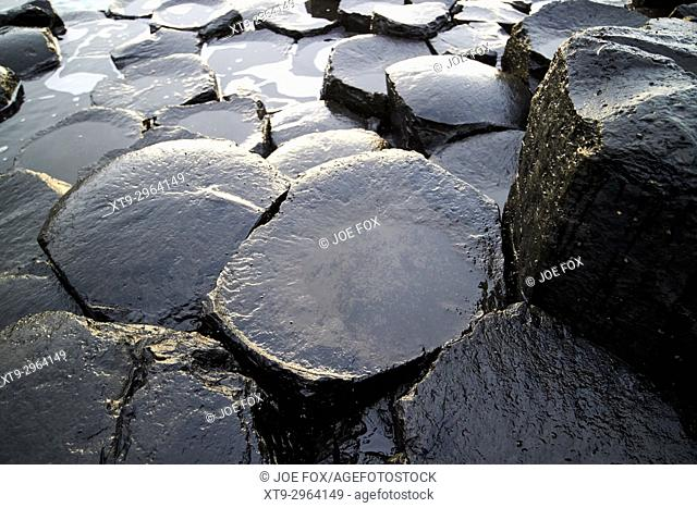 rocks below the waterline at Giants Causeway county antrim northern ireland uk