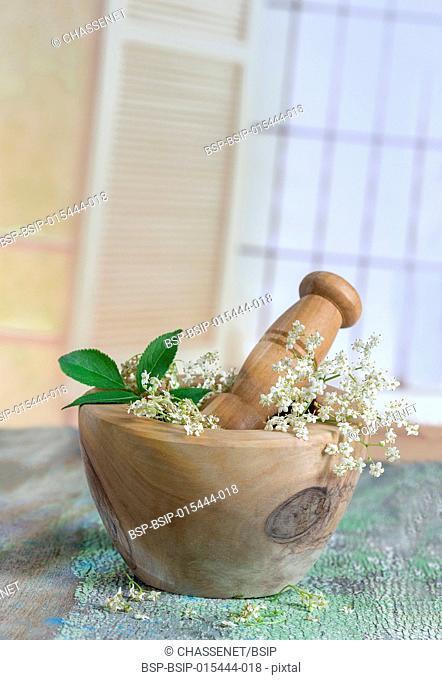 White elder flowers on a wooden mortar