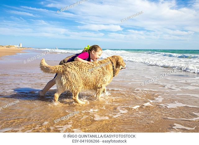 smiling four years old little girl talking and playing with a dog, golden retriever breed pedigree, on seashore in Palmar Beach (Vejer, Cadiz, Andalusia, Spain)