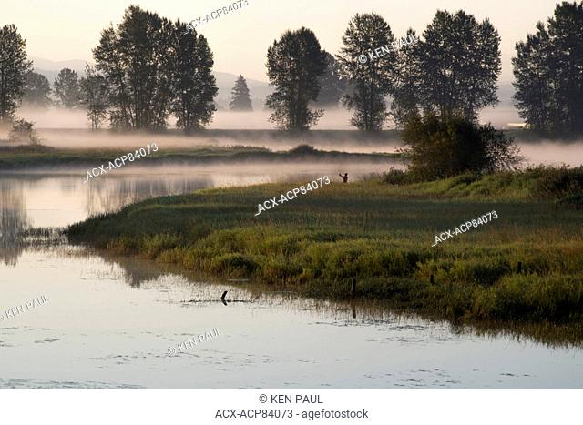 Fisherman at sunrise on the Alouette River, Pitt Meadows, British Columbia, Canada
