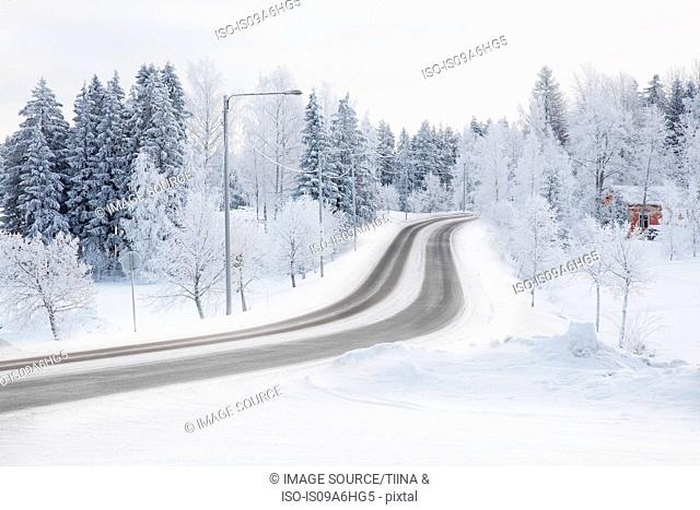 Tire tracks in snowy rural road