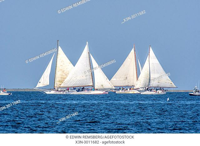 Side view of a group of traditional Skipjack boats competing against one another in Deal Island Skipjack Races, Deal Island, Maryland. USA