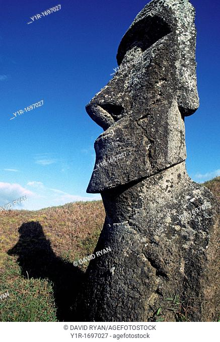 Chile, Easter Island, A Moai at the 'Factory'