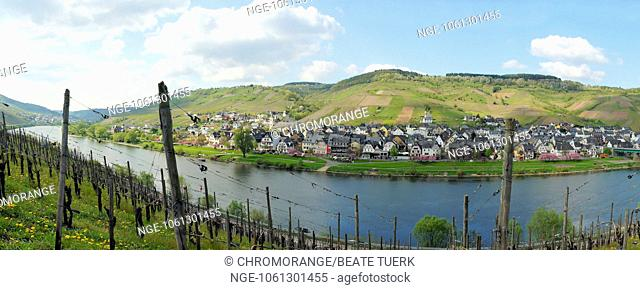 Panorama of the Middle Moselle from Burg to Reil