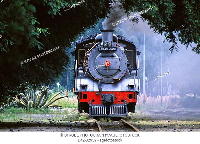 Steam train. South Africa