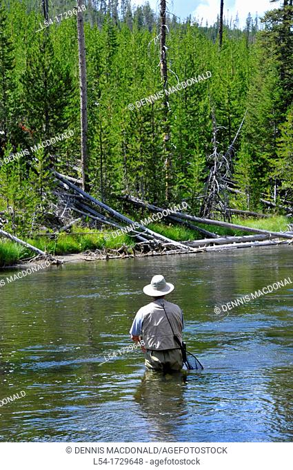 Fly Fishing Yellowstone National Park Wyoming WY United States