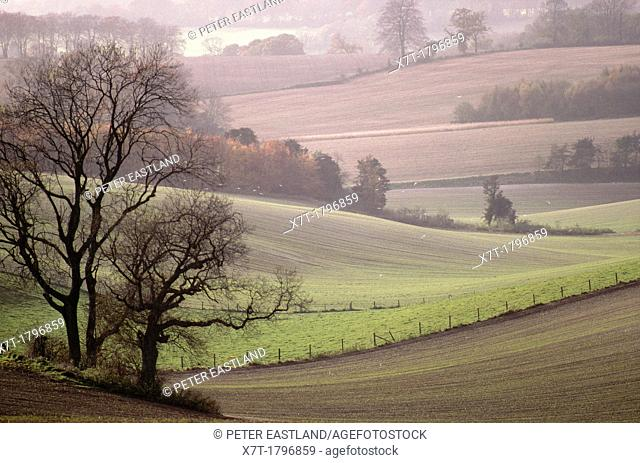 Winter countryside between Bishops Waltham and Winchester in Hampshire, southern England, United Kingdom