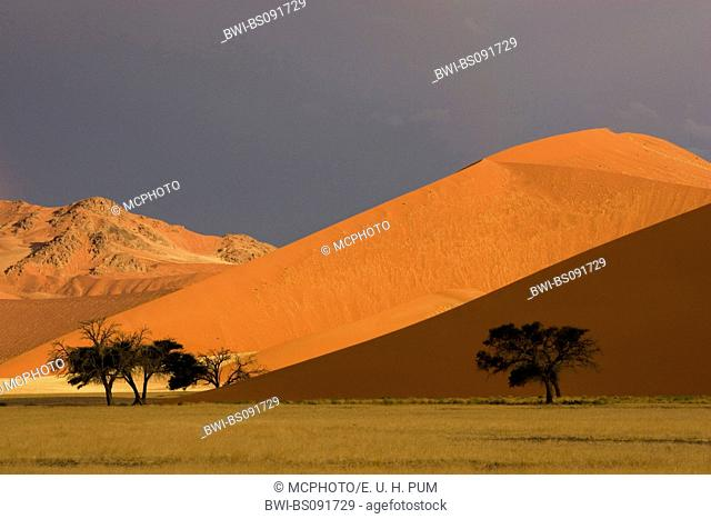 thunderclouds over dunes in Sossusvlei, Namibia, Namib-Naukluft NP