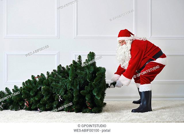 Santa Claus pulling Christmas tree