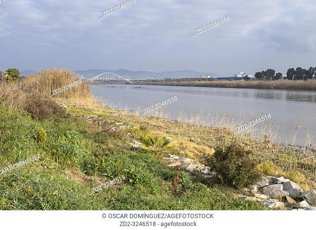 View over the River Llobregat with industrial area in background. Natural Areas of the Llobregat Delta. Barcelona province. Catalonia. Spain