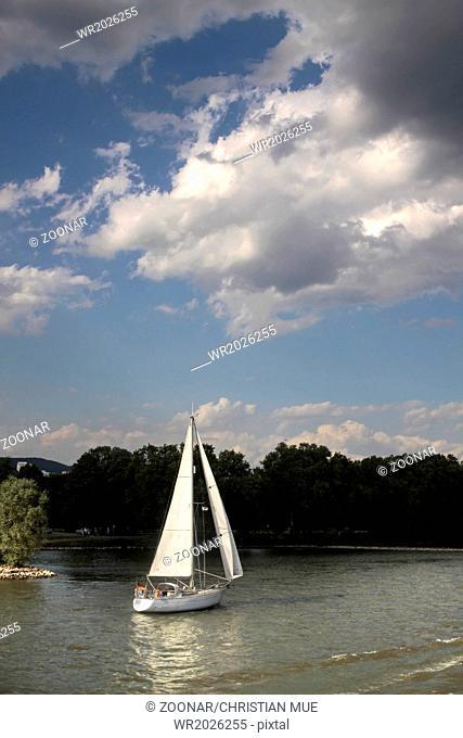 Sailing boat on the Rhine