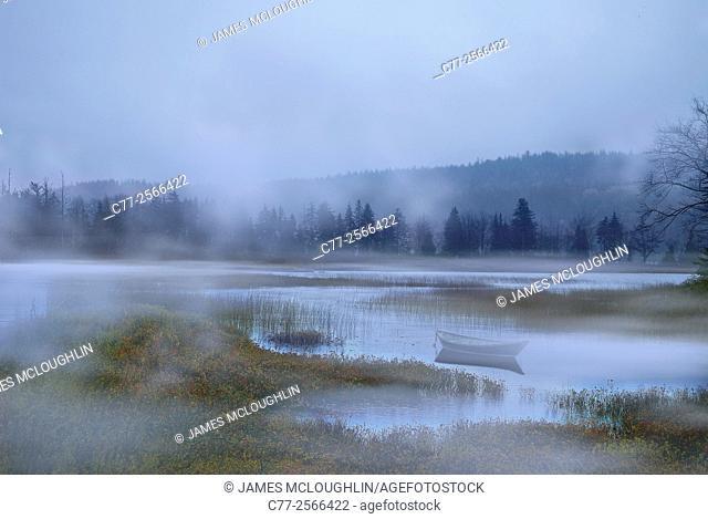 Landscape, waterscape, salt marsh