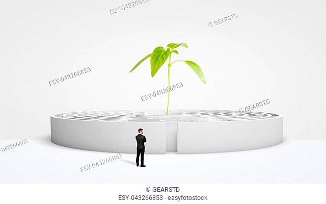 A businessman standing in front of a white round maze with a new green plant growing from its center. Growing business. Business incubator