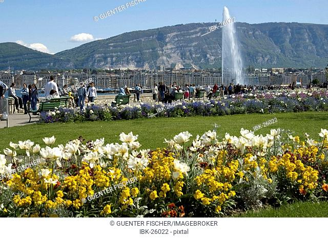 Spring in Geneva View at the Jet dEau fountain and Mount Saleve Geneva Switzerland