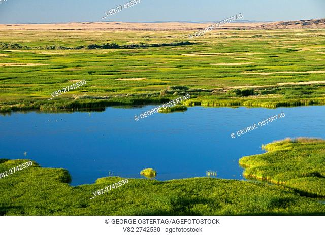 Buena Vista Pond, Malheur National Wildlife Refuge, High Desert Discovery Scenic Byway, Oregon