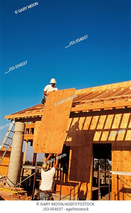 Sheeting a roof with plywood. East Antelope, California. USA