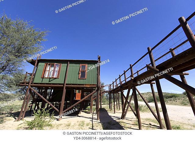 Urikaarus Wilderness Camp, Kgalagadi Transfrontier Park, kalahari desert, South Africa
