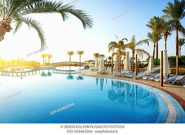 Swimming pool and big green palms at sunrise
