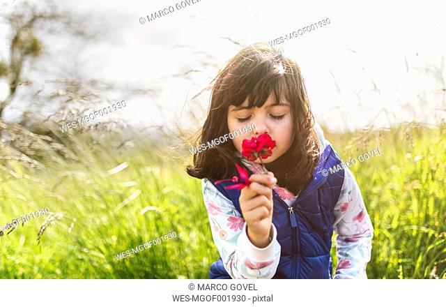 Portrait of little girl smelling red flower