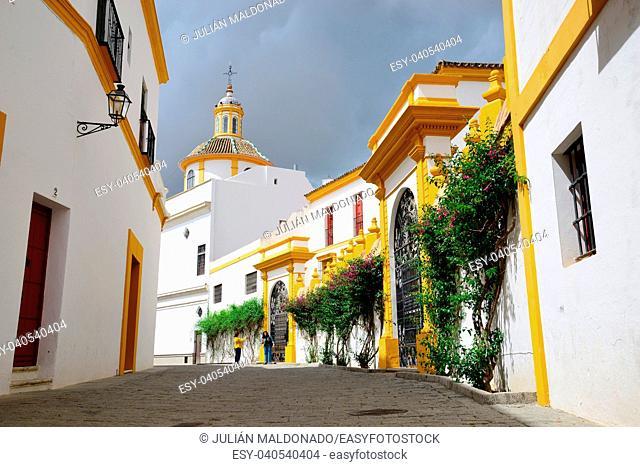 Close to the Plaza de Toros of the Real Maestranza de Sevilla