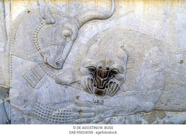 Bas-relief depicting a battle between a lion and a bull, east staircase of the Apadana palace in Persepolis (UNESCO World Heritage List, 1979), Iran
