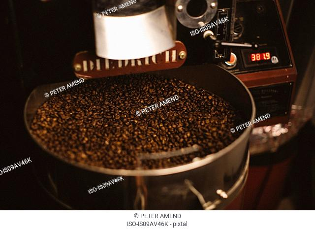 Roasted coffee beans in coffee roaster