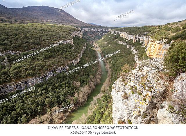 Viewpoint of the River Ebro Canyon near Pesquera de Ebro village, Paramos region, Burgos, Spain