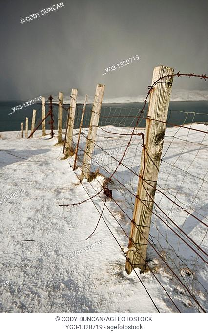 Rusty barb wire fence through snowy landscape, Isle of Harris, Outer Hebrides, Scotland