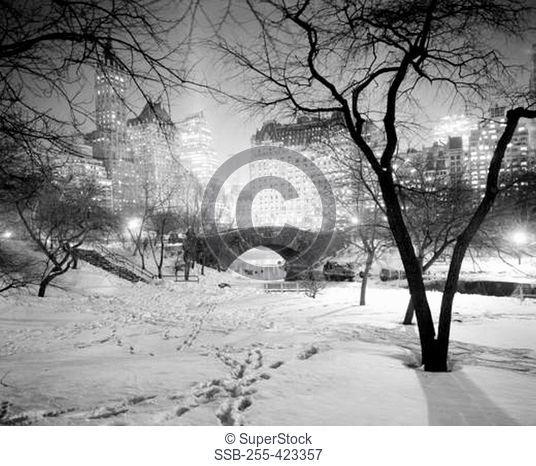 USA, New York City, Central Park on winter night