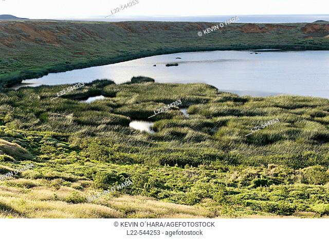 A freshwater lake bordered by reeds called Tortora. Rano Raraku is a volcanic crater formed of consolidated ash, or tuf. It is the quarry in which about 95% of...
