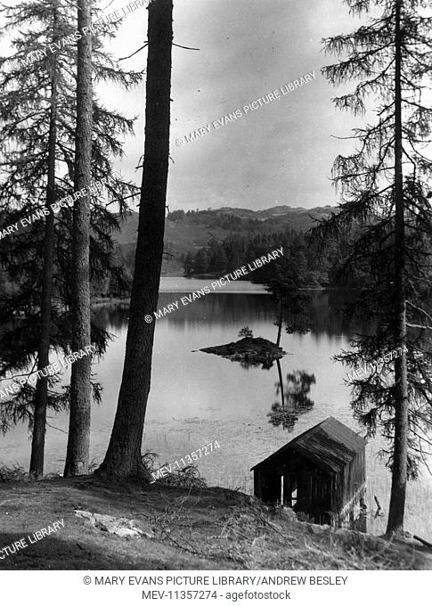 View of Tarn Hows, Lake District, Cumbria