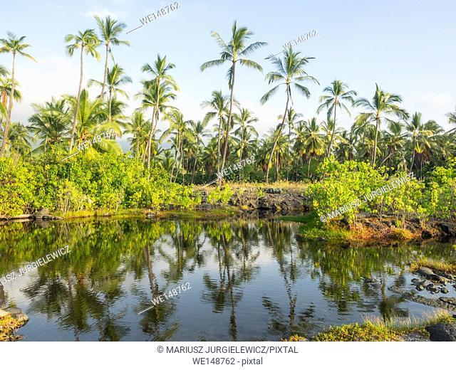 Puuhonua o Honaunau National Historical Park preserves the site where, up until the early 19th century, Hawaiians who broke a kapu (one of the ancient laws)...