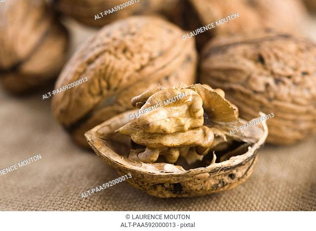 Shelling walnuts