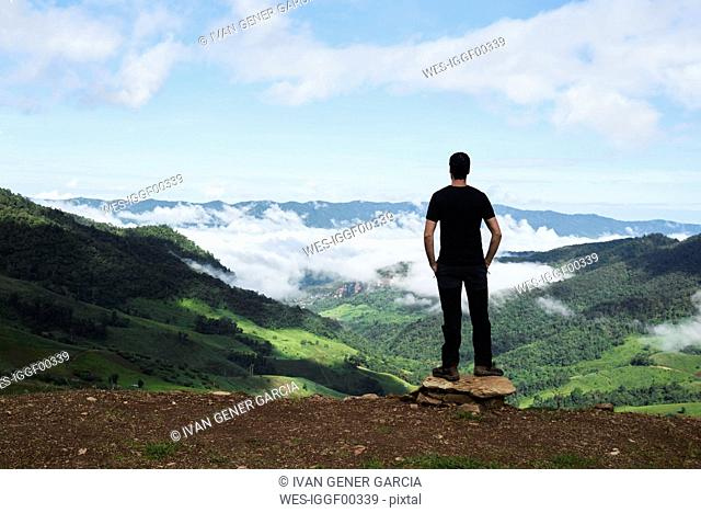 Thailand, Phu Chi Fa, traveler standing at the top of a hill with view over rice fields