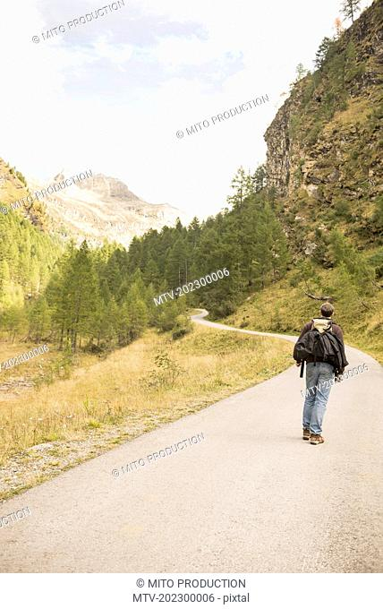Rear view of a mature hiker walking on mountain road, Austrian Alps, Carinthia, Austria