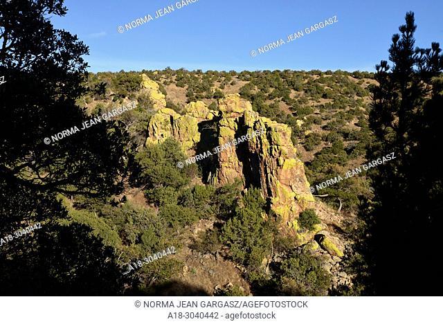 Moss covers a rock formation along the Arizona Trail, north of Patagonia, Arizona, USA