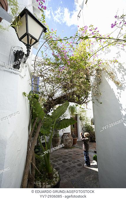 Hideouts of Frigiliana. Frigiliana, Andalusia, Spain, Europe
