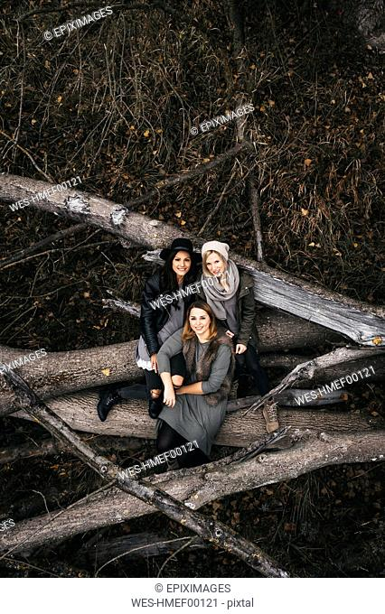 Group picture of three friends sitting on deadwood in autumnal nature, aerial view