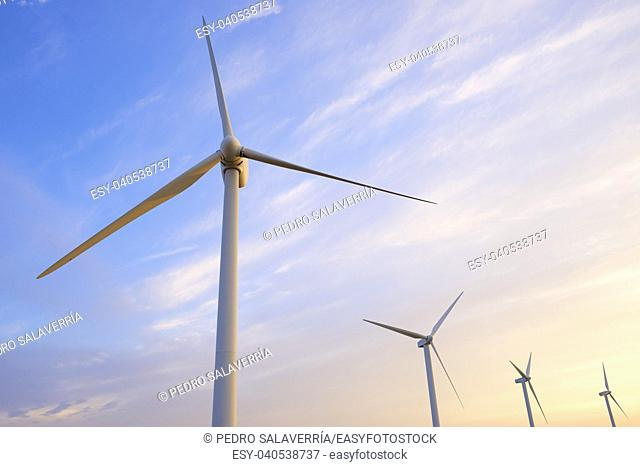 Windmills for electric power production at sunset, Pozuelo de Aragon, Zaragoza, Aragon, Spain