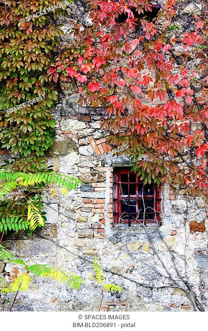 Window in Old Brick and Stone Cottage