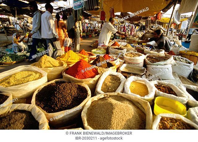 Spices at the local market on the banks of the river Godavari, Nasik, Maharashtra, India, Asia