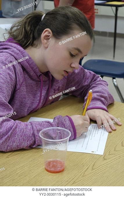 Student Doing Experiment in 7th Grade Science Class, Wellsville, New York, USA