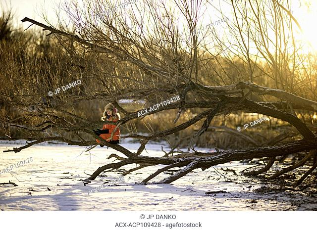 Girl (10) sitting in a tree on the shore of a frozen lake in winter