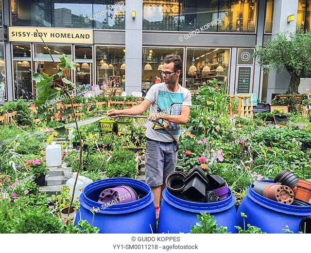 Tilburg, Netherlands. Bram is an Urban Gardener, maintaining his urban kitchen garden down town Tilburg