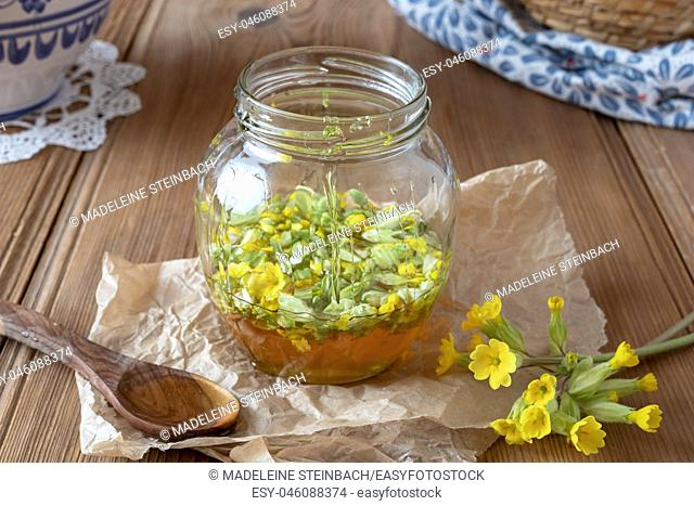 Preparation of homemade herbal syrup from fresh primrose flowers and honey
