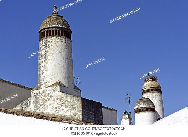 stork and typical chimneys of Mourao, Alentejo region, Portugal, southwertern Europe