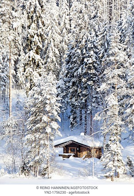 Small sauna cabin in the forest by a frozen lake at Winter  Location Suonenjoki Finland Scandinavia Europe