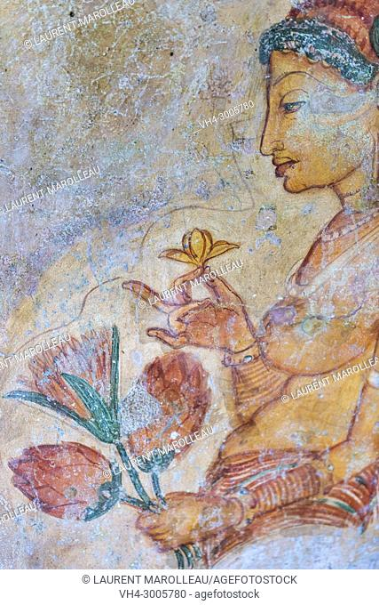 Frescoes of Sigiriya Lion Rock Fortress, Ancient City of Sigiriya, North Central Province, Sri Lanka, Asia
